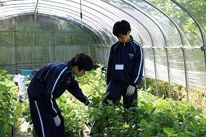 トライやるブログ (16).jpg